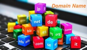 Web Hosting Vs Domain