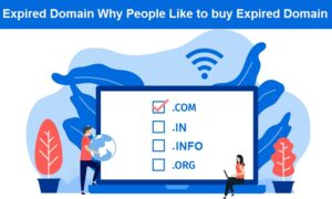 Read more about the article Expired Domain | What is Expired domain | Why People Like to Buy It